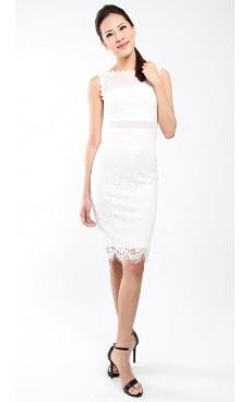 Lace Pencil Dress - White